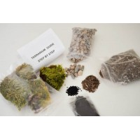 9GreenBox - Terrarium/Fairy Garden Kit - Create Your Own Living Terrarium or Fairy Garden
