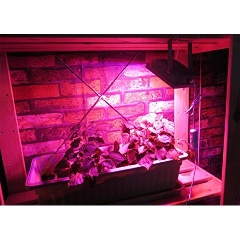 flood light with cable and plug led plant grow light for garden greenhouse hydroponic indoor. Black Bedroom Furniture Sets. Home Design Ideas