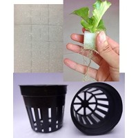 Aggreen Sponges Cubes Plugs & Mesh Basket Cups 20 EA For Hydroponics Farms