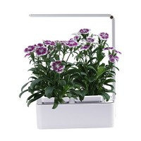 Indoor Herb Garden, AIBIS Hydroponics Watering Growing System, Organic Home Herbs Gardening Kit with Led Grow Light, Not Contain Seeds, Best for Fl...