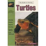 Turtles (Guide to Owning A...)