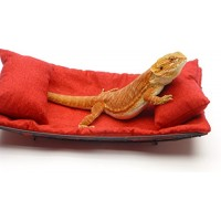 Chaise Lounge for Bearded Dragons, Red Crackle fabric