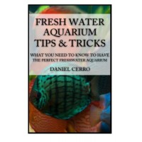 Freshwater Aquarium Tips &Tricks: What you Need to Know to Have the Perfect Fresh