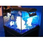 Deep Blue Professional ADB13530 30-Gallon Rimless Mini Frag for Aquarium, 24 by 24 by 12-Inch