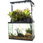 ECO-Cycle Aquaponics Indoor Garden System with LED Light Upgrade