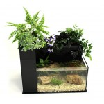 Fin to Flower Aquaponic Aquarium - Large System C (Black)