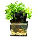 Fin to Flower Aquaponic Aquarium - Mini System A (Black)