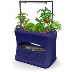 Good Ideas AQUA-OBL Aspen Aqua Grow Aquaponics Gardening System, Ocean Blue