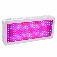 HollandStar LED Grow Light Full Spectrum 1000 Watt/1200W for Indoor Plants Veg and Flower (2000W)