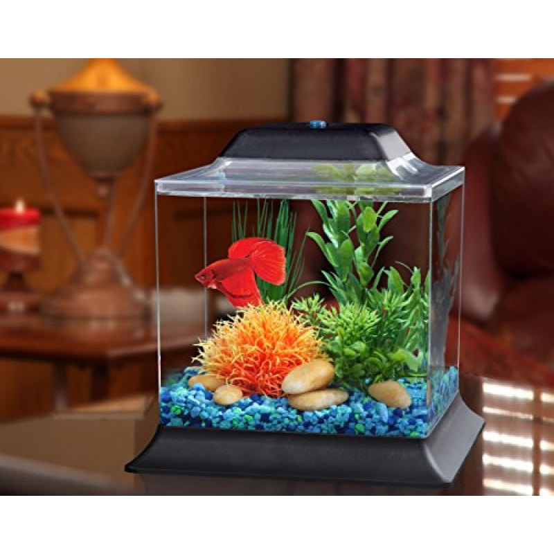5 gallon aquarium crescent kit 5 gallon image titled for 800 gallon fish tank