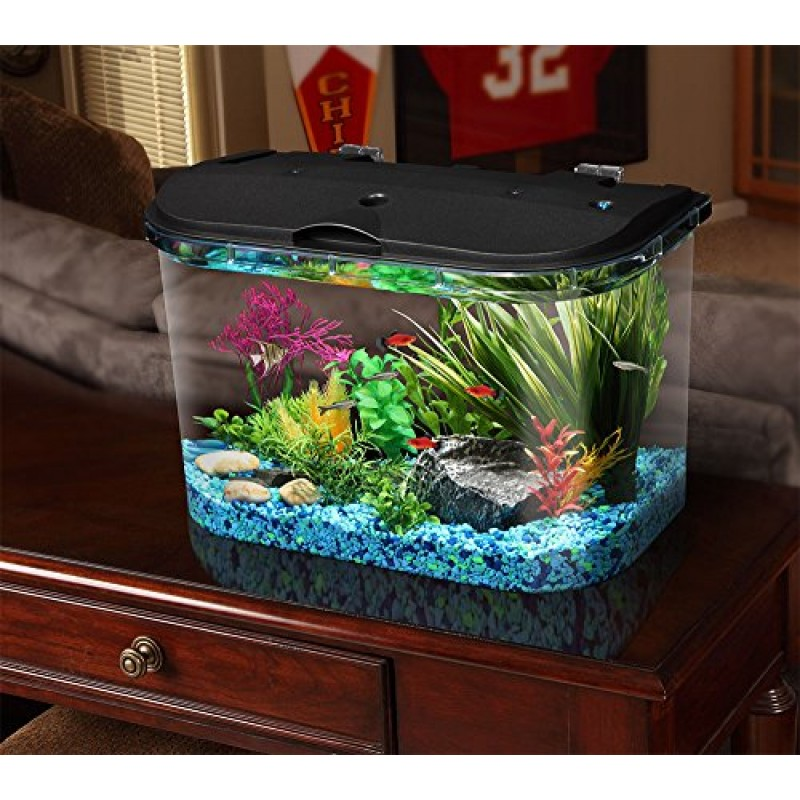Aquarius aq15005 aquarius 5 rounded 5 gallon aquarium kit for Fish aquarium stores