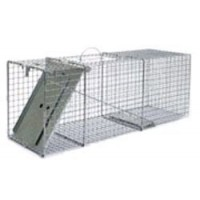 Little Giant Single Door Entry Live Animal Trap, 32.125-Inch