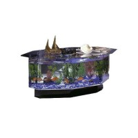 Midwest Tropical Aquarium Coffee Table w Six Sides