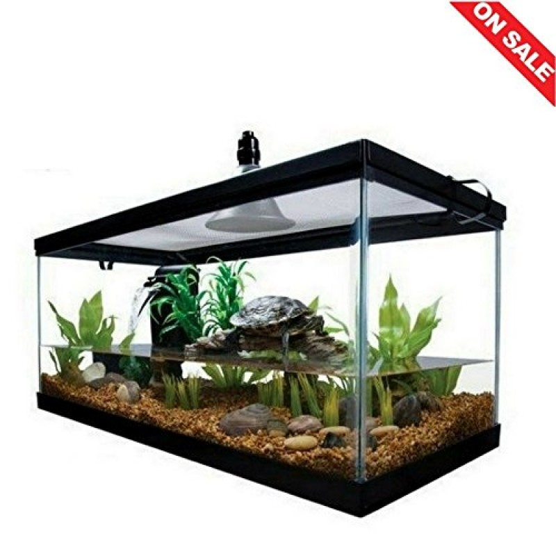 Reptile Habitat Setup Aquarium Tank Kit Filter Screen Lid