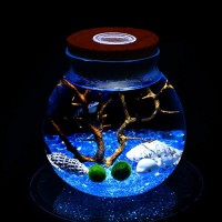 LED Aquarium Marimo Kit - Globe Glass Jar with 2 Aquatic Moss Ball Blue Glass Pebbles Fan Coral Branch and Seashells Office Desk Decor Table Center...