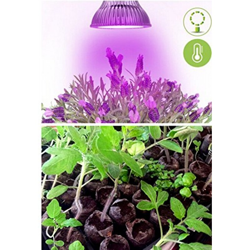 oxyled led grow light bulb hydroponic plant grow lights for greenhouse e26 12w 3blue