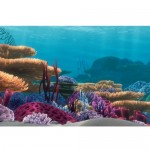 Penn Plax Finding Nemo Ocean Floor Scenery Background, 20-Gallon