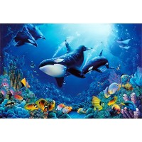 (24x36) Delight of Life Underwater Scene Art Print Poster