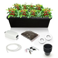 SavvyGrow Hydroponic Growing System Kit - 2 Large Airstones, Bucket with Air Pump - Complete Hydroponic Setup for Indoor Herbs, Seeds, Seedlings, L...