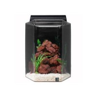 "SeaClear 20 gal Deluxe Hexagon Acrylic Aquarium Combo Set, 15 by 15 by 24"", Black"