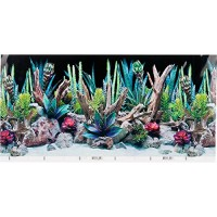"SeaView Double-Sided Desert Dream & Deep Flora Terrarium Background, 36"" L X 18"" H, Medium"
