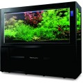 220 Gallon Aquarium (1800, Black/black)